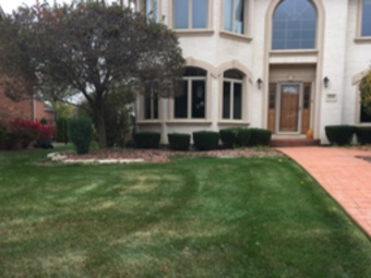 Order Lawn Care in Ingalls Park, IL, 60432