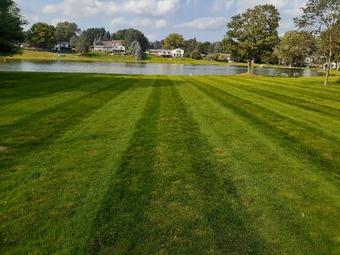 Order Lawn Care in Pontiac, MI, 48210