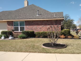 Order Lawn Care in Fort Worth, TX, 76119