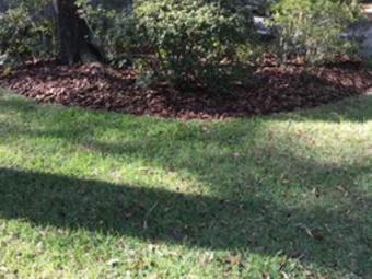 Order Lawn Care in Hawthorne, FL, 32640
