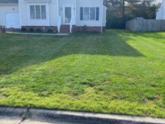 Order Lawn Care in Richmond City, VA, 23224