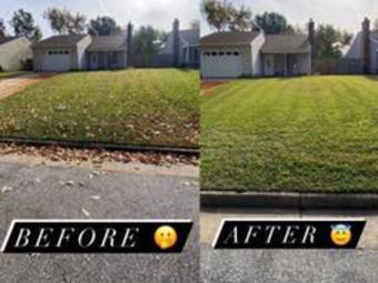 Order Lawn Care in Virginia Beach, VA, 23455