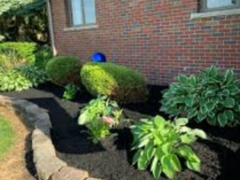 Order Lawn Care in Houston, TX, 77086