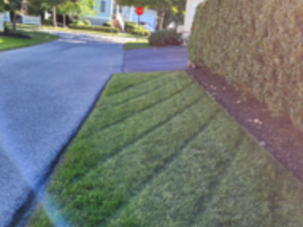 Order Lawn Care in Grandview Heights, PA, 17601