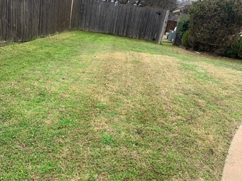 Order Lawn Care in Fort Worth, TX, 76109
