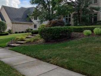 Order Lawn Care in Worth, IL, 60482
