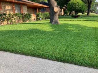 Order Lawn Care in Dallas, TX, 75237