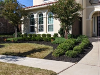 Order Lawn Care in The Colony, TX, 75036