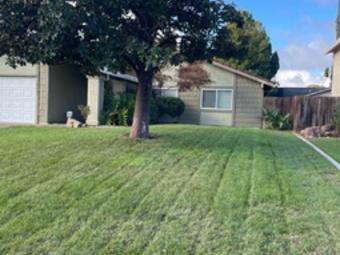 Order Lawn Care in Sacramento, CA, 95815