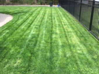 Order Lawn Care in Troy, MI, 48083