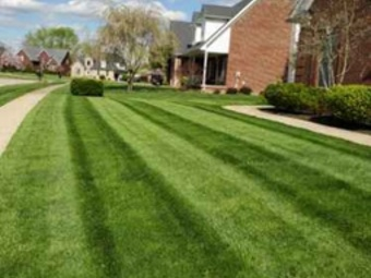 Order Lawn Care in Louisville, KY, 40213