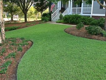 Order Lawn Care in New Port Richey, FL, 34653
