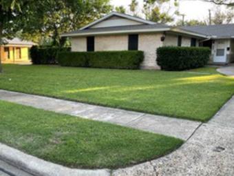 Order Lawn Care in Princeton, TX, 75407