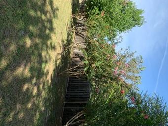 Order Lawn Care in Newberry, FL, 32669