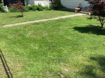 Order Lawn Care in Greensboro, NC, 27405