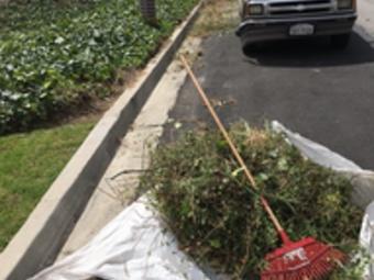 Order Lawn Care in Oxnard, CA, 93033