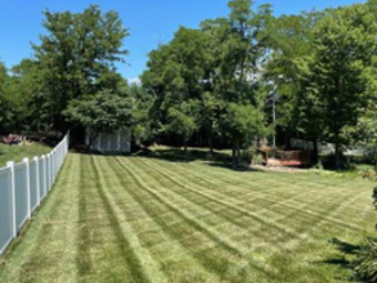 Order Lawn Care in Blue Springs, MO, 64014
