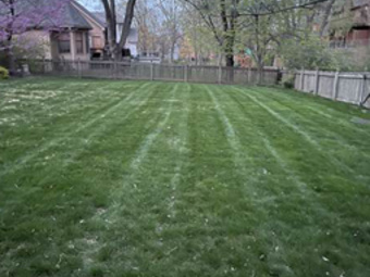 Order Lawn Care in Kansas City, MO, 64154