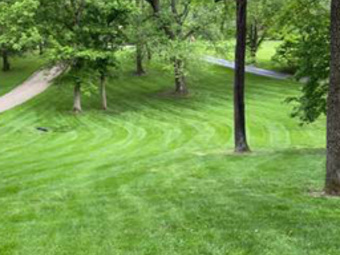 Order Lawn Care in Saint Charles, MO, 63304