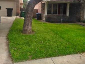Order Lawn Care in San Antonio, TX, 78209