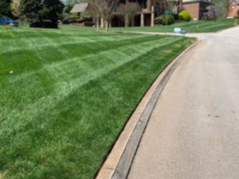 Order Lawn Care in Knoxville, TN, 37931