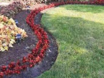 Order Lawn Care in Joliet, IL, 60431