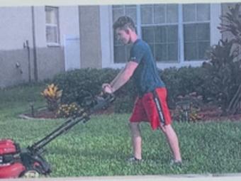Order Lawn Care in Wesley Chapel, FL, 33545