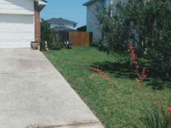 Order Lawn Care in Austin, TX, 78747