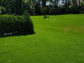 Order Lawn Care in Salisbury, NC, 28081