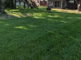 Order Lawn Care in Independence, MO, 64055-5302