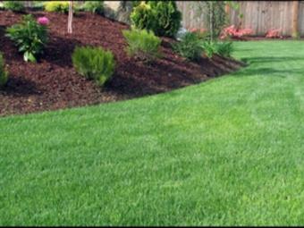Order Lawn Care in Braselton, GA, 30517