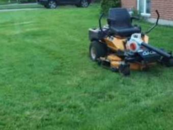 Order Lawn Care in Rantoul, IL, 61822