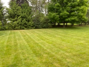 Order Lawn Care in Waterville, NY, 13480
