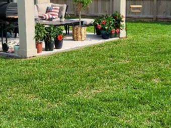 Order Lawn Care in Corpus Christi, TX, 78414