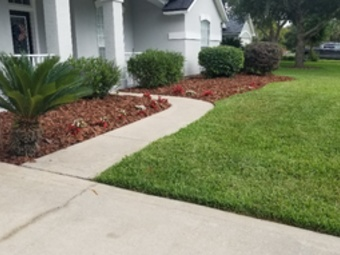 Order Lawn Care in St. Augustine, FL, 32092