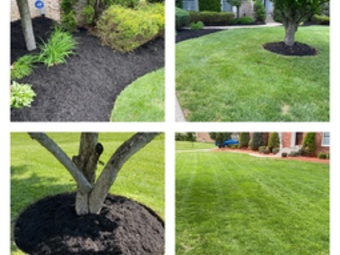 Order Lawn Care in Louisville, KY, 40229
