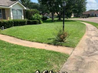Order Lawn Care in Inez, TX, 77968