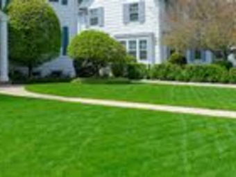 Order Lawn Care in Baltimore, MD, 21224