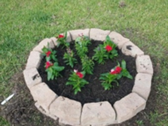 Order Lawn Care in Dickinson, TX, 77539