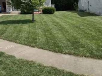 Order Lawn Care in Springfield, IL, 62702