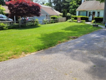 Order Lawn Care in Copiague, NY, 11726