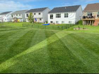 Order Lawn Care in Osseo, MN, 55311