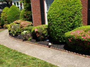 Order Lawn Care in Jonesboro, GA, 30238