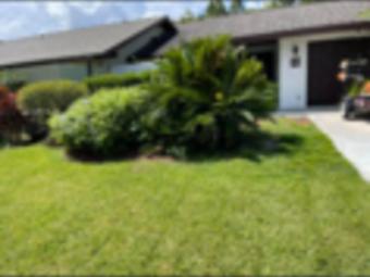 Order Lawn Care in Buena Ventura Lakes, FL, 34743