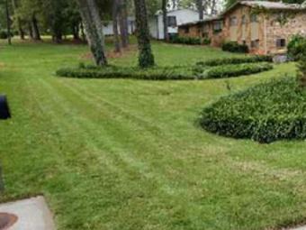 Order Lawn Care in Marietta, GA, 30008
