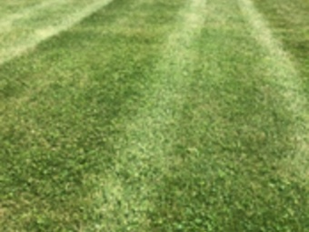 Order Lawn Care in Canal Winchester, OH, 43110