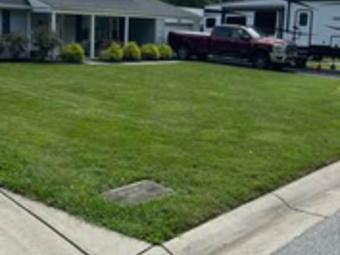 Order Lawn Care in Springdale, MD, 20774