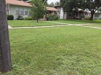 Order Lawn Care in San Antonio, TX, 78220