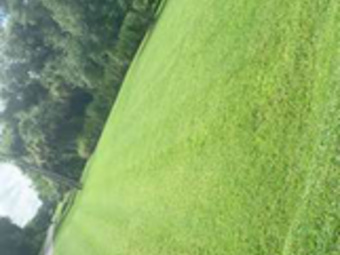 Order Lawn Care in Fort Myers, FL, 33919