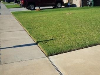 Order Lawn Care in Winter Haven, FL, 33881